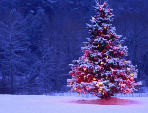 Gesloten tijdens feestdagen
