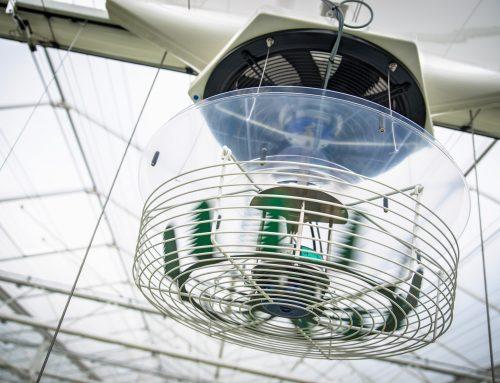 Verticale ventilatie voor een actief gewas